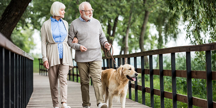 Older adult couple walking dog
